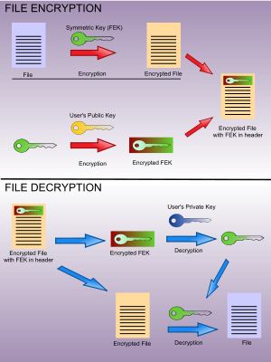 Encryption File System in windows 10 | office setup