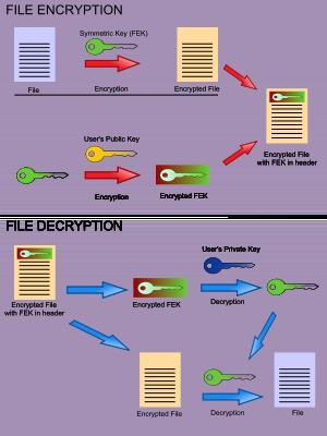 Encryption File System in windows 10 | office setup